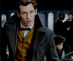 gif, fantastic beasts, and theseus scamander image