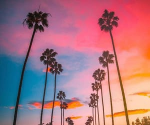 Beverly Hills, blue, and california image