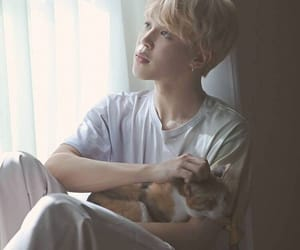 angel, jimin, and cat image