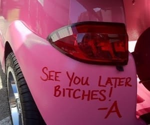 bitch, pink, and pll image