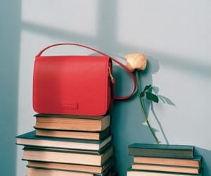 blue, red, and bag image