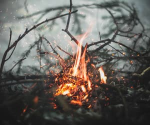 flames, warm, and wood fire image