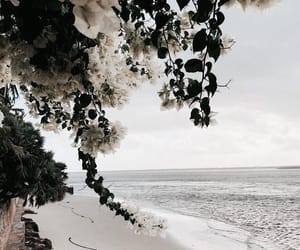 beach, ocean, and places image
