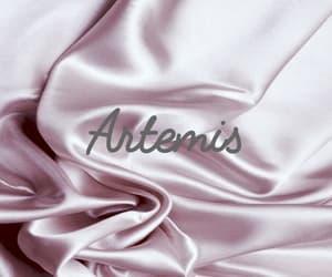 artemis, hunting, and rose image
