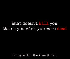 bmth, love, and bring me the horizon image