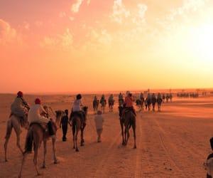 travel, desert, and orange image