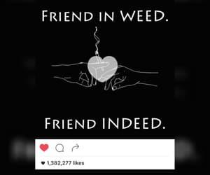 cannabis, high, and high life image