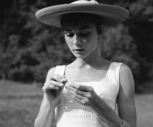 audrey, audrey hepburn, and classic image