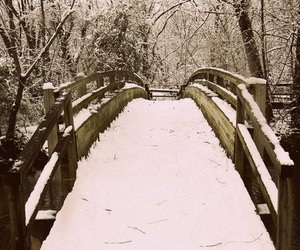 beautiful, cold, and nature image