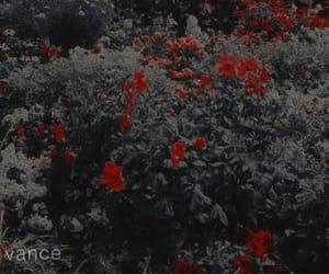 sehun exo, exo aesthetic, and kpop theme image