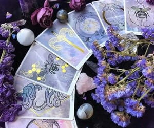 purple and witch image