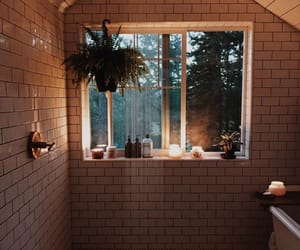bathroom, forest, and shower image