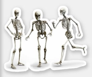 dancing, funny, and humanskeleton image