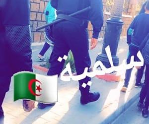 clash, dz, and algerie image