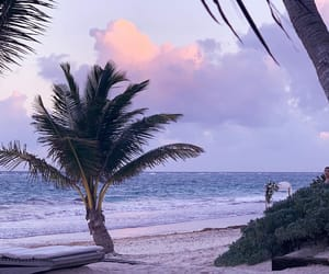 beach, beautiful, and holiday image