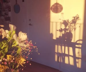 flowers, home, and light image