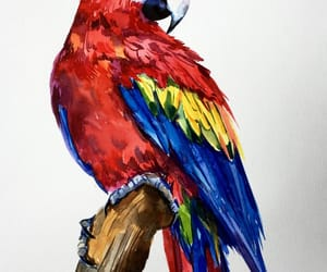 etsy, colorful parrot, and original watercolor image