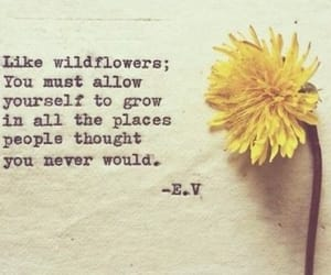 believe, inspiring, and flowers image