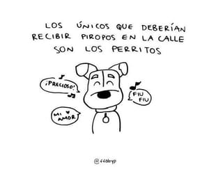 dog, frases, and quotes image