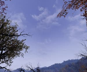 autumn, lavender, and twilight image