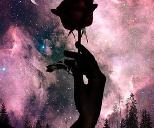 flower, moon, and sky image