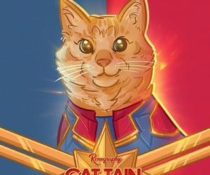 cats, Marvel, and capitana marvel image