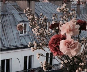 aesthetic, building, and flowers image