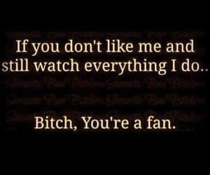 quotes, bitch, and fan image