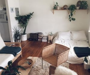room, home, and plants image
