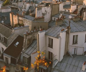 photography, aesthetic, and paris image
