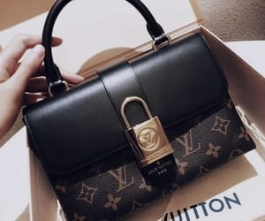 expensive, Louis Vuitton, and classy image