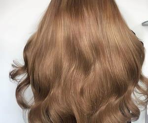 long hair, light brown hair, and light brown image