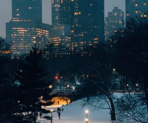 Central Park, city, and cold image