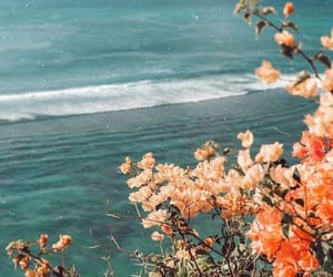 flowers, beach, and aesthetic image