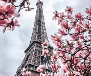 article, culture, and paris image