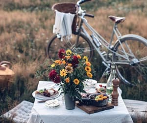 flowers, picnic, and travel image