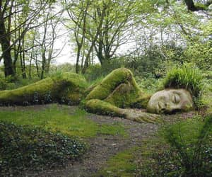 green, woods, and amazing work! image