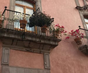 architecture, flowers, and plants image