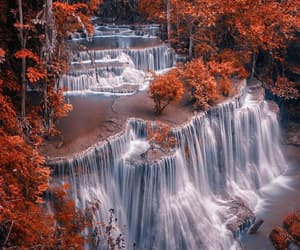 forest, travel, and waterfall image