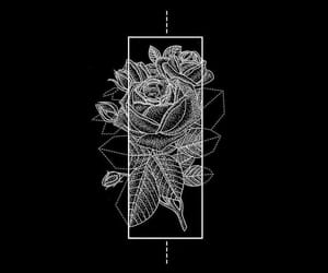overlay and rose image