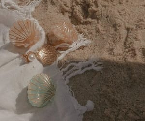 shell, beach, and aesthetic image