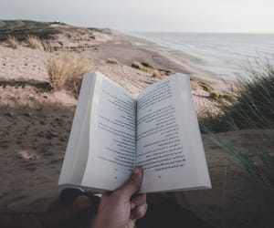 beach, book, and nature image