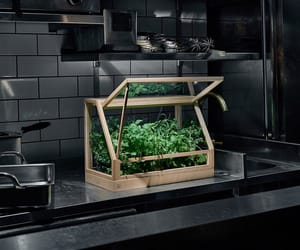 herbs and kitchen image