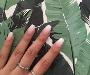 nails and hand image