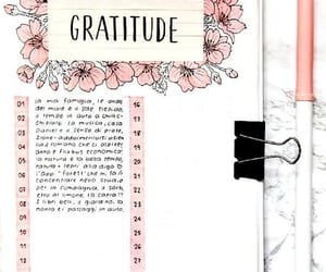 gratitude journal and bullet journal image