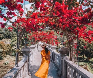 bali, fashion, and flowers image