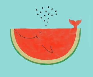 animal, spring, and watermelon image