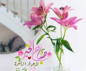 صباح الخير, صباح الورد, and كلمات image