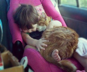 baby, car, and cat image