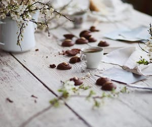 botany, branches, and coffee image